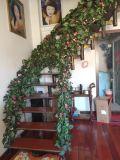 都市花園 復式 豪華裝修 南北通透 3室4廳2衛 176.4㎡