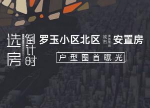 選房倒計時:羅玉小區北區城市更新項目安置房戶型圖首曝光
